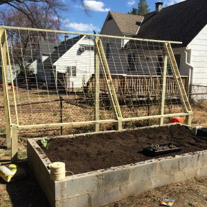 Trellis in Place